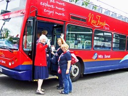 New Forest bus