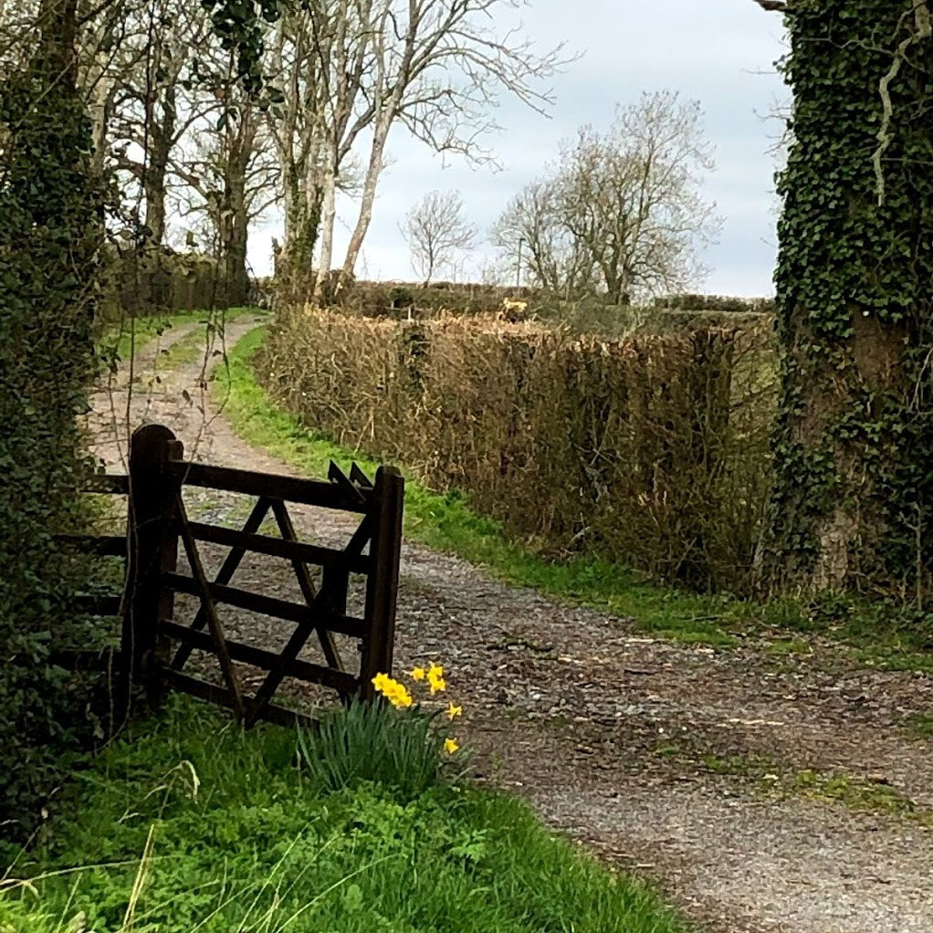 Gateway and rural views at Somermead, Outdoor Camping and Activity Venue