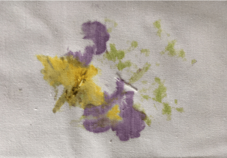 Photo of Hapa Zome (Japanese) flower printing